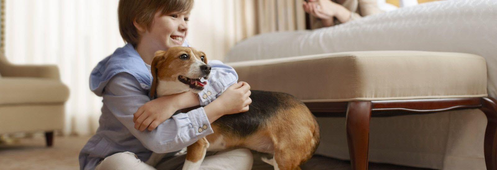 Pet Friendly Hotels Cambridge Ma